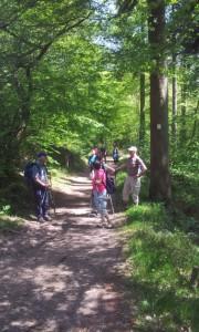 Promenade Kintzheim 2